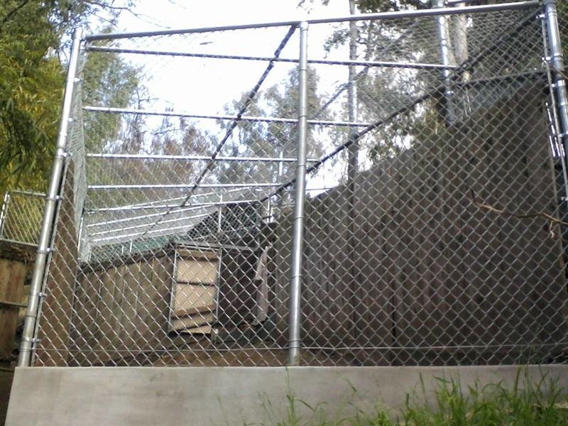 Chain Link Fencing Company Serving Colorado Spring
