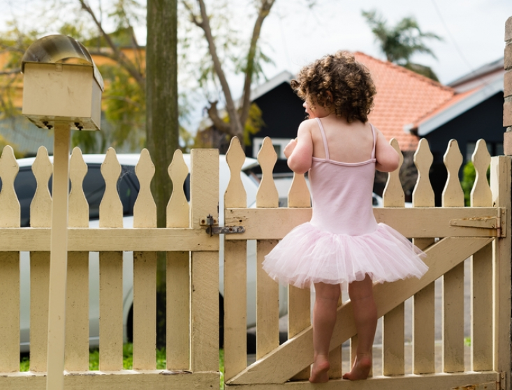 Safest Colorado Springs Fence for Your Family