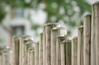 Tending to an old fence - Is it time to replace it?